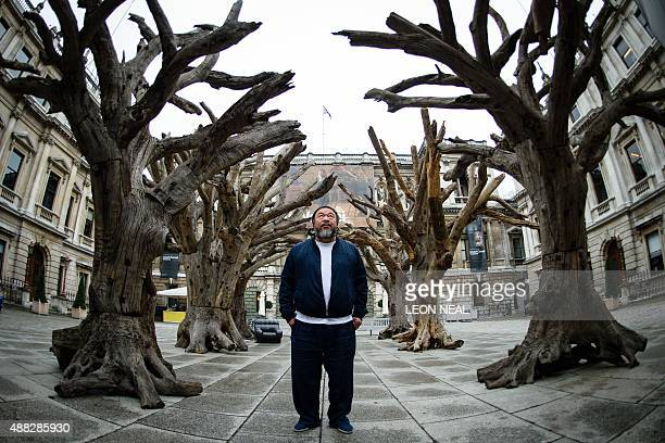 Chinese artist Ai Weiwei poses for photographers with his work 'Tree' during a press preview at the Royal Academy in London on September 15 ahead of...