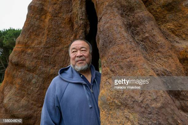 """Chinese artist and dissident activist Ai Weiwei stands inside """"Pequi Tree"""" , a 32 meters sculpture molded from a 1200 years old Brazilian tree,..."""