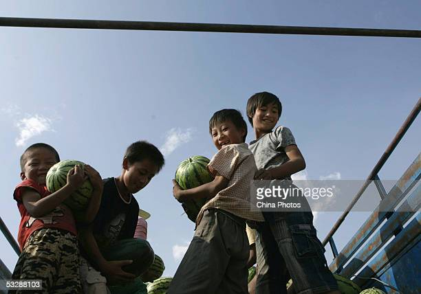 Chinese boys play after helping their parents harvest watermelons July 24 2005 in Tongxin County Ningxia Hui Autonomous Region northwest China Many...