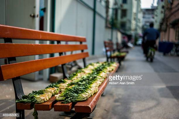 Chinese cabbage drying in the sun on a public bench down one of the narrow lanes of Shanghai city