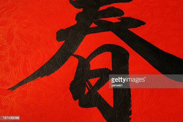 Chinese Calligraphy Closeup
