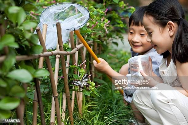 Chinese children in a garden looking at a butterfly