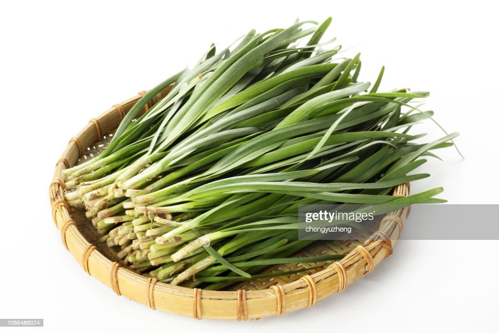 Chinese chive in a white background : Stock Photo