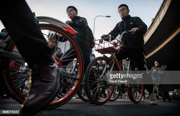 Chinese commuters crowd the bicycle lane as they ride bike shares during rush hour on April 11 2017 in Beijing China The popularity of bike shares...