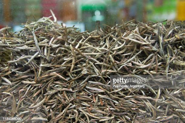chinese dried green tea (c. sinensis) - argenberg stock pictures, royalty-free photos & images