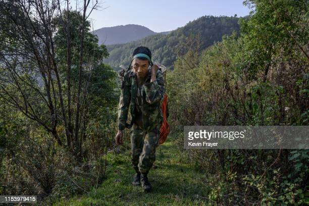 Chinese ethnic Lisu honey hunter Dong Haifa walks out on a trail after gathering wild cliff honey from hives in a gorge on May 31 2019 near Mangshi...