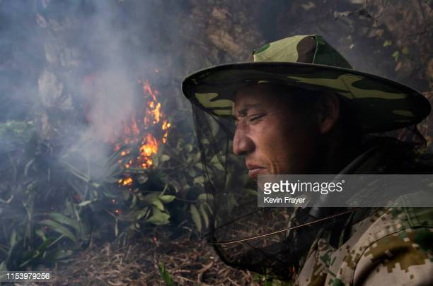 Chinese ethnic Lisu honey hunter Ma Yongde sit still next to a fire he set to deter bees before gathering wild cliff honey from hives in a gorge on...