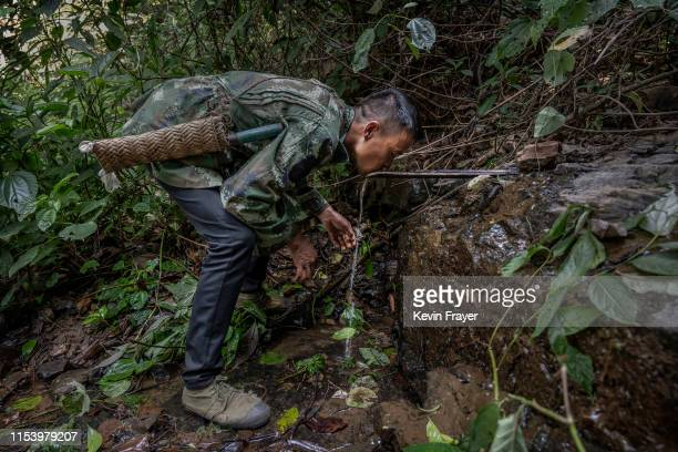 Chinese ethnic Lisu honey hunter Mi Qiaoyun drinks from a spring on his way to gathering wild cliff honey from hives in a gorge on May 10 2019 near...