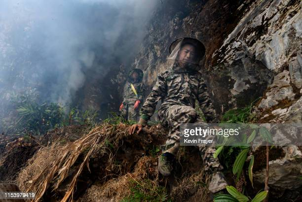 Chinese ethnic Lisu honey hunters Dong Haifa right and Ma Yongde set a fire to deter bees before gathering wild cliff honey from hives in a gorge on...