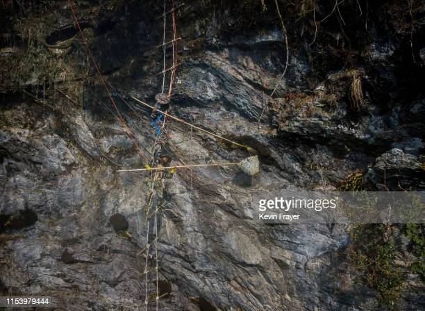 Chinese ethnic Lisu honey hunters Dong Haifa top and Mi Qiaoyun stand on a makeshift rope ladder while gathering wild cliff honey from hives in a...