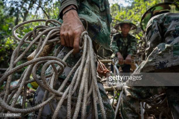 Chinese ethnic Lisu honey hunters Dong Haifaleft and Mi Qiaoyun center and Ma Yongde build a makeshift rope ladder as they prepare to gather wild...