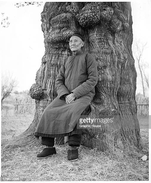 Chinese eunuch sits by a tree.