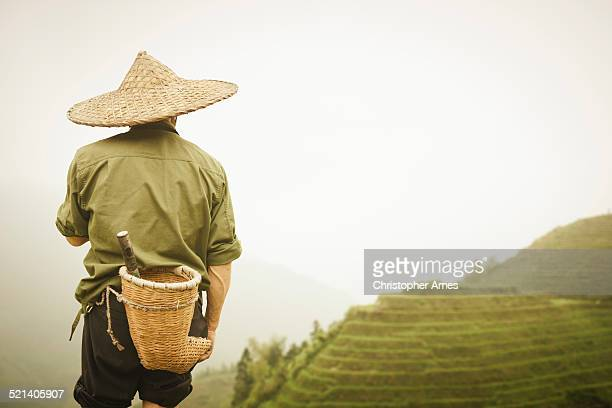 chinese farmer dragons back rice terraces - bamboo instrument stock photos and pictures
