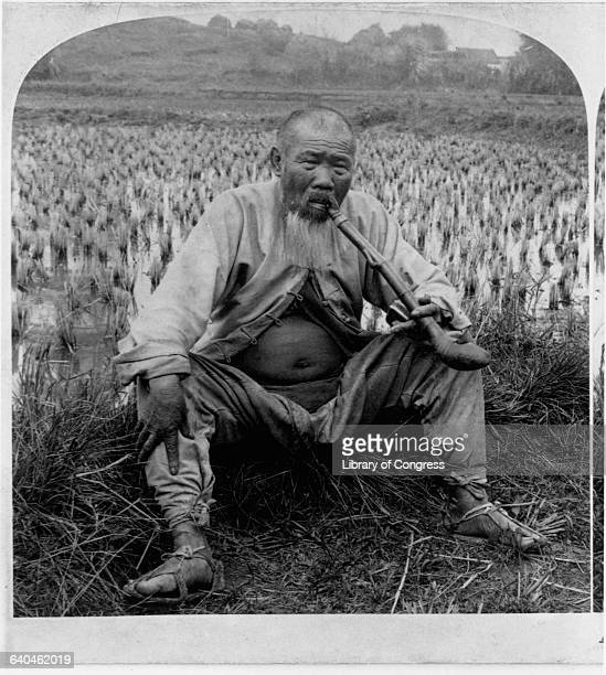A Chinese farmer sits at the edge of a rice paddy and smokes a long pipe | Location Honam China