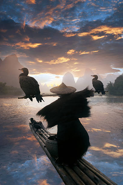 Chinese fisherman with cormorant
