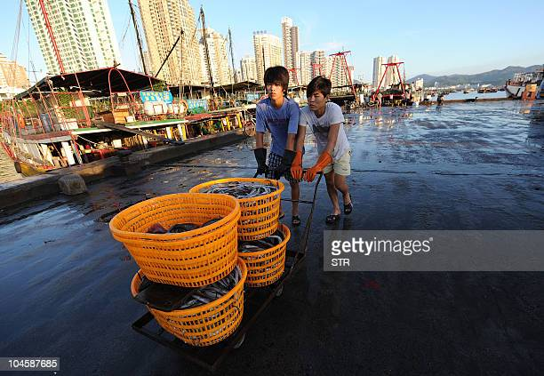 Chinese fishermen deliver their day's catch at a fishing port in Zhuhai southern China's Guangdong province on September 20 2010 China's fish...