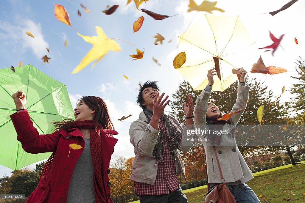 Chinese friends throwing leaves in park in autumn : Bildbanksbilder