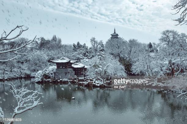 chinese garden in snow,yangzhou,china - yangzhou foto e immagini stock