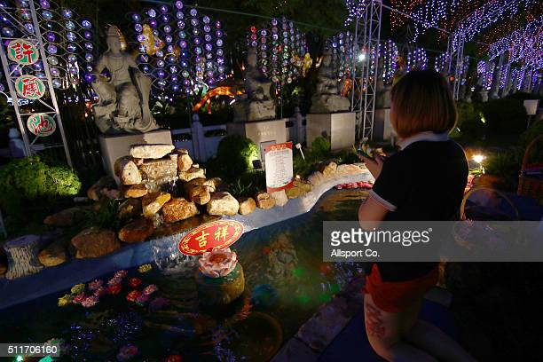 Chinese girl offers prayer at the Fo Guang Shan Ding Zen Temple to celebrate the Lantern Festival on the last day of Chinese Lunar New Year...