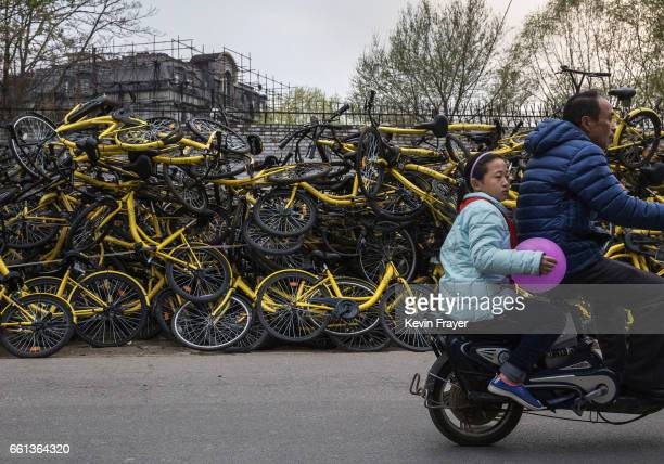 Chinese girl rides on the back of a scooter past piles of damaged bicycles pulled off the streets by bike share company Ofo Inc at a repair depot for...
