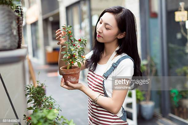 chinese girl wearing an apron