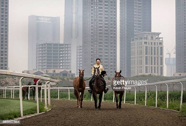 Chinese horse trainer exercises polo horses at the Tianjin Goldin Metropolitan Polo Club on July 17 2016 in Tianjin China China's rising affluence...