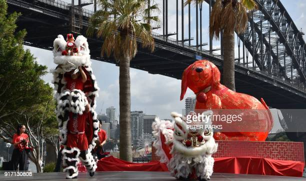 Chinese lion dancers perform in front of the harbour bridge at a media launch for the Lunar New Year Festival in Sydney on February 12 2018 The...