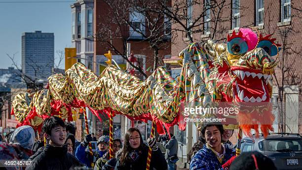 Chinese Lunar New Year Dragon