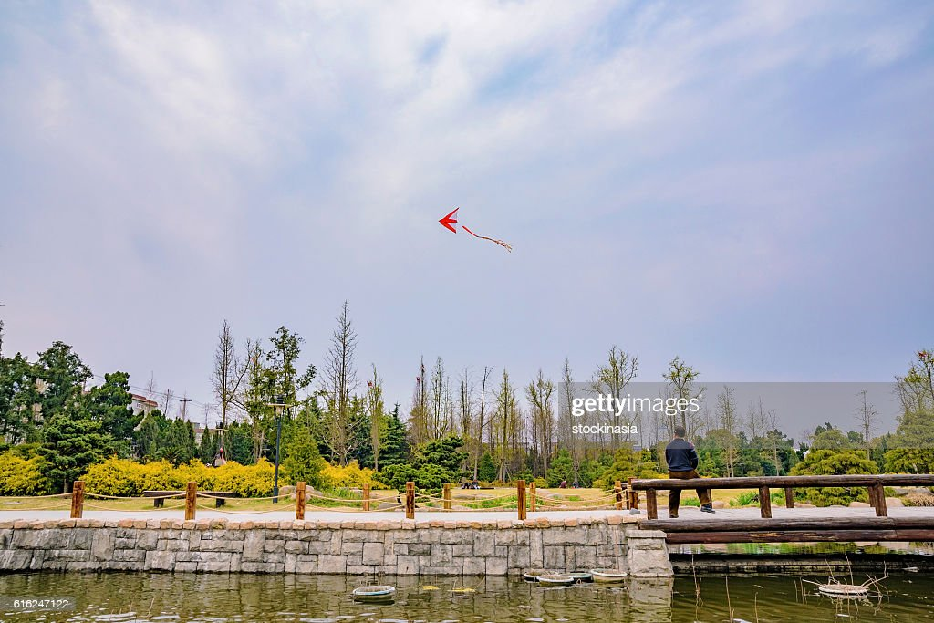 Chinese man flying a kite in a park in Shanghai : Foto de stock