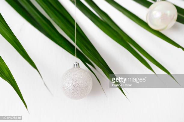 Chinese man placing gifts under the christmas tree shot through tropical leaves