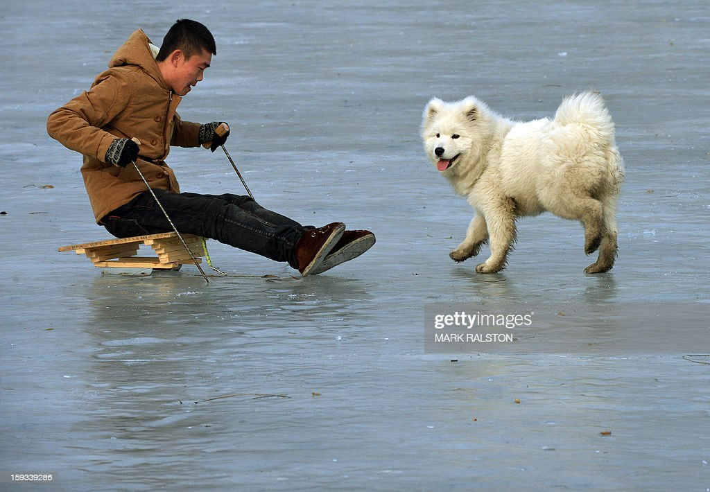 A Chinese man plays with his dog on the frozen Houhai Lake in Beijing on January 12, 2013. The lake attracts scores of tourists and locals who use its frozen surface for skating, ice swimming and even exercising their dogs despite winter temperatures of up to minus 18 Celsius (0 F). AFP PHOTO/Mark RALSTON