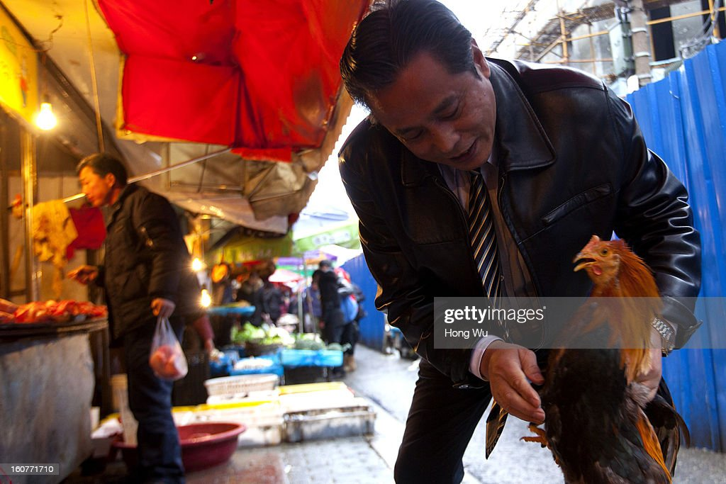 A Chinese man selects a cock at an outdoor market on February 5, 2013 in Shanghai, China. Chinese citizens are stocking up on food ahead of the upcoming Chinese Lunar New Year, also known as Spring Festival, is one of the most important festivals in China and falls this year on February 10, 2013.