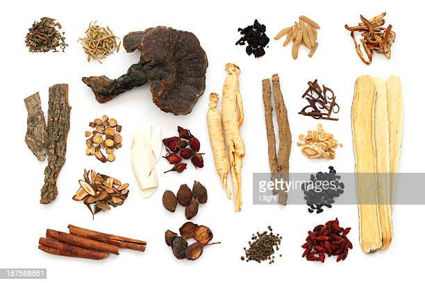 Chinese medical herbs on white