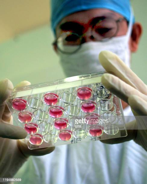 Chinese medical researcher undergoes a test on the SARS virus at a hospital laboratory in Guangzhou, southern China's Guangdong province 22 May 2003....