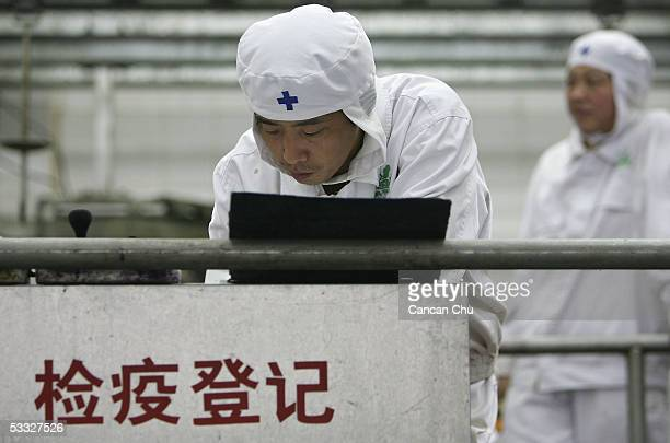 Chinese medical workers check the pork at a slaughterhouse on August 5, 2005 at a suburb of Beijing, China. China has launched nationwide campaigns...