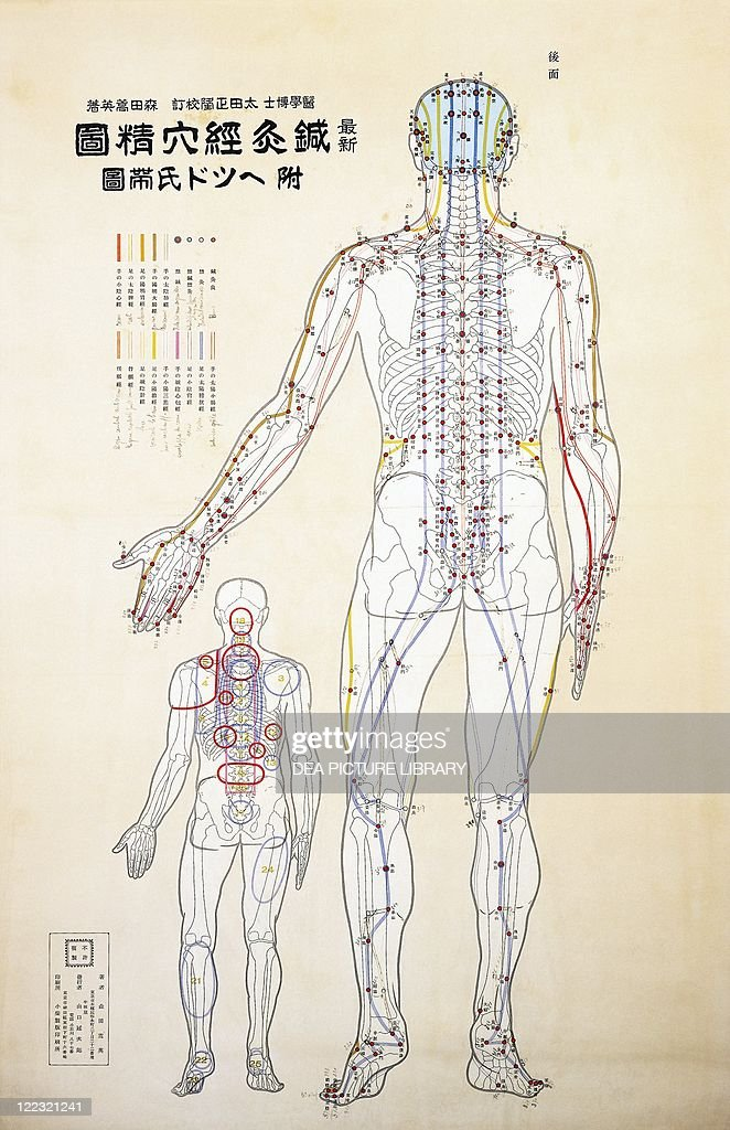 Focal points of the human body back view watercolor pictures chinese medicine acupuncture focal points of the human body back view watercolor ccuart Choice Image