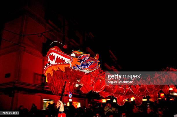Chinese New Year - Brief