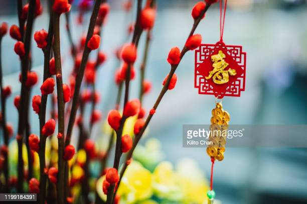 chinese new year celebration decoration - prosperity stock pictures, royalty-free photos & images