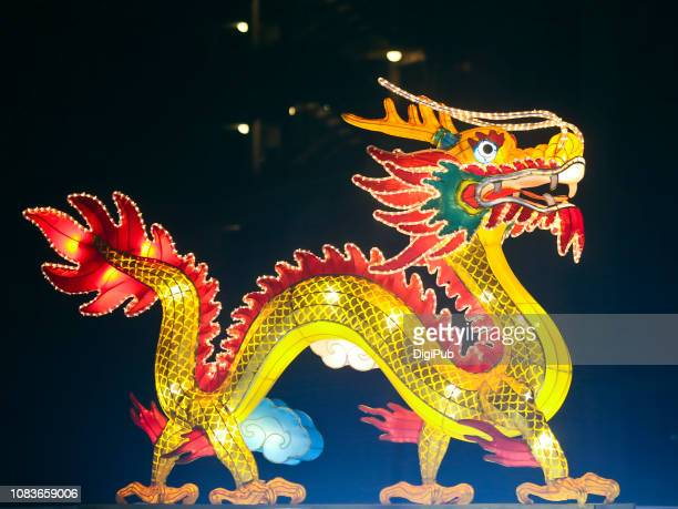 chinese new year lanterns 2019 - chinese dragon stock photos and pictures