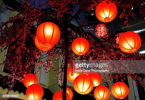 keywords abundance blue celebration celebration event chinese culture chinese lantern chinese lantern festival chinese new year - Chinese New Year Lantern