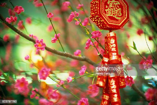 Chinese New Year Ornament Hanging on Branch