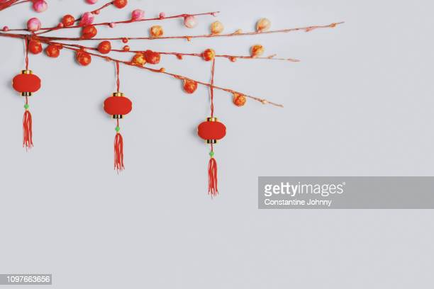chinese new year ornaments on white background. red lanterns hanging on twigs. - chinese decoration stock pictures, royalty-free photos & images