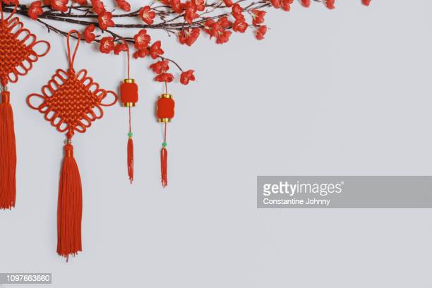 chinese new year ornaments on white background. red lanterns hanging on tree branch. - 中国提灯 ストックフォトと画像