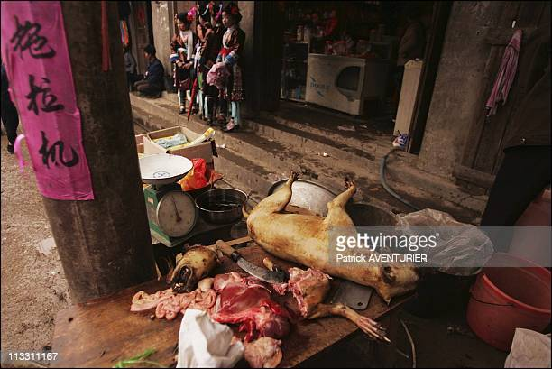 Chinese New Year To The Sound Of The Lusheng On February 11Th 2005 In China Here Dog Meat For Sale In Danian For The Lusheng Feast The Miao Villagers...
