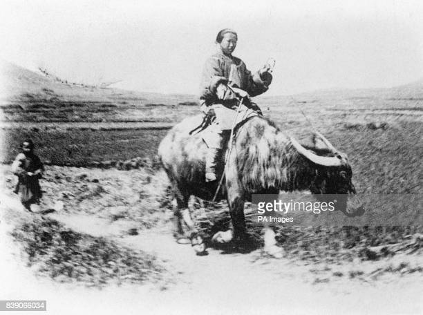 A Chinese peasant riding a water buffalo In October of 1911 the revolution started in China which would see the end of the Qing Dynasty