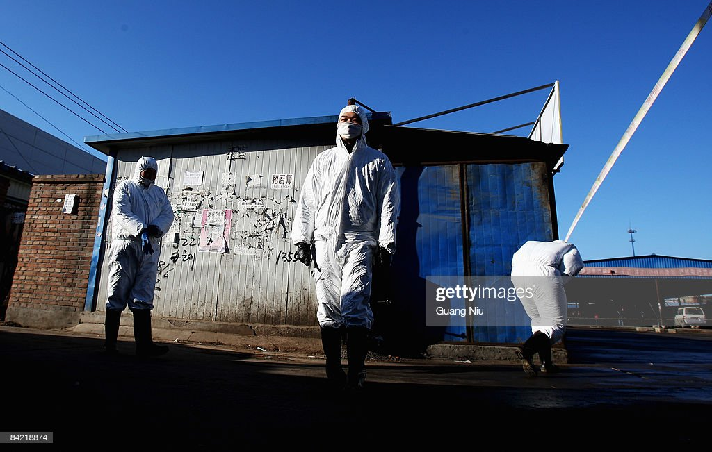 Chinese policemen close a poultry market on January 9, 2009 in Yanjiao, north China's Hebei province, China. Beijing authorities have banned all live poultry from other parts of the country from entering the capital, after a woman died from the H5N1 bird flu virus on Monday morning.