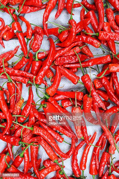 Chinese red chili peppers