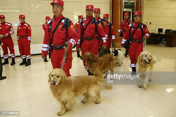 Chinese search and rescue personnel walk with their search dogs as they prepare to head to earthquakeravaged Nepal from Beijing on April 26 2015...