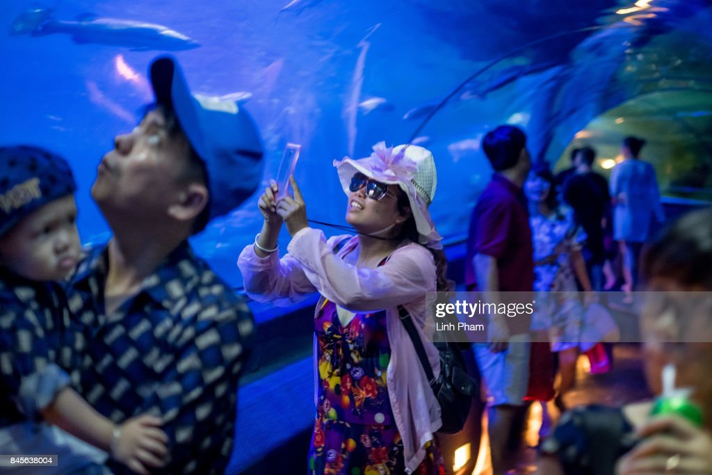A Chinese tourist make video records at the aquarium in Vinpearl Land Amusement Park on September 8, 2017 in Nha Trang, Vietnam. With a total of 2.7 million tourists in 2016, China is Vietnam's largest source of visitors, as most mainland Chinese head to the coastal cities of Da Nang or Nha Trang located in the centre of the country and famed for their beaches, historical sights and seafood. Based on reports, Chinese tour groups have grown to 150 to 200 while the influx has caused problems such as the lack of Chinese speaking staff and inexperience in dealing with inappropriate behavior by the mainland Chinese who have been criticized for their lack of manners in public spaces, including spitting and urinating in public and being noisy at religious places and heritage sites. As Vietnamese travel agencies aim to improve service for Chinese tourists, local media have reported the illegal use of the Renminbi in local markets and Chinese agents and guides acting without proper authorization, leading to distortions in how Vietnam's history and culture have been presented.
