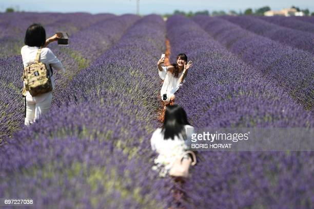TOPSHOT Chinese tourists make selfies in a lavender field in Valensole southern France on June 18 2017 / AFP PHOTO / BORIS HORVAT